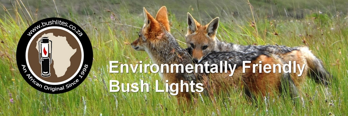Environmentlly Friendly bush Lights